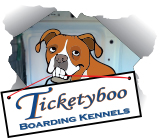Ticketyboo Boarding Kennels